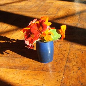 Nasturtiums in a vase in the sunlight